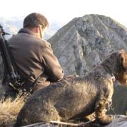 Coto de caza en Piloña