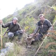 Rececho venado en un coto de caza en Asturias