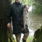 Pesca de Salmón en el Esva, Coto de Brieves