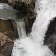 Río Sella, la Salmonera