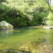 Pesca de Salmón y Reo en el Esva
